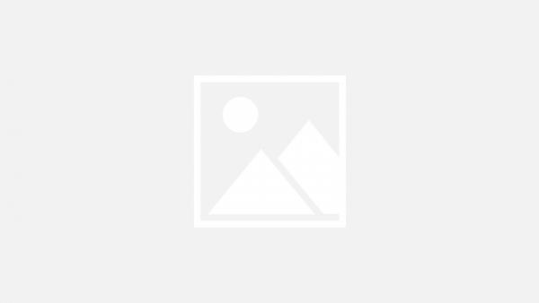 Decora y diviértete con Utilex - Mall del Sur