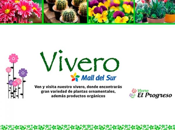 VIVERO EL PROGRESO - Mall del Sur