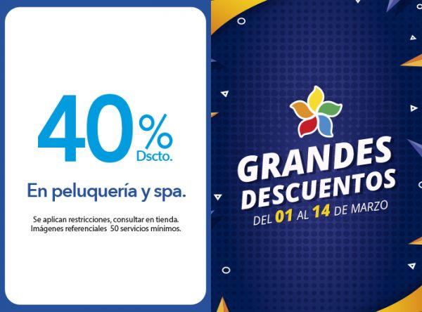 40% DSCTO. EN PELUQUERÍA Y SPA. MONTALVO - Mall del Sur