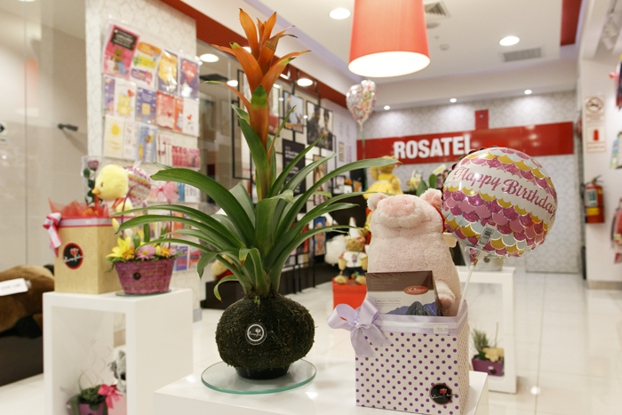 Rosatel - Mall del Sur